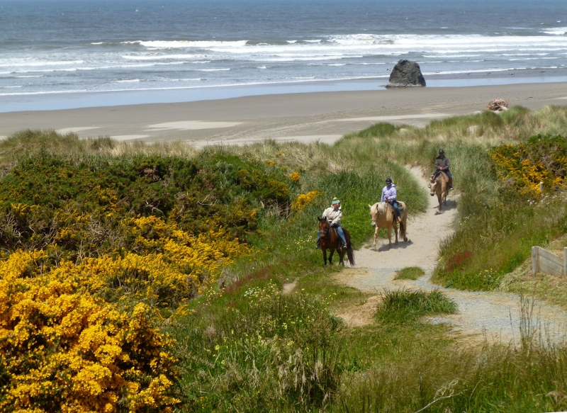 Short walk to the Bandon Beach Riding Stables!
