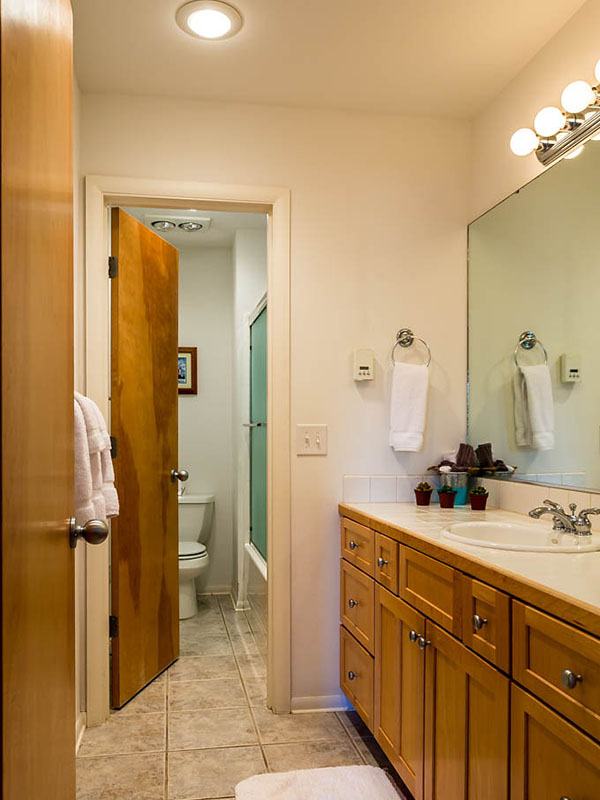 shared downstairs bath with separate shower room