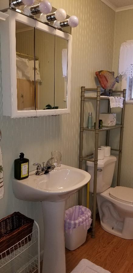 Master bath combo tub and shower